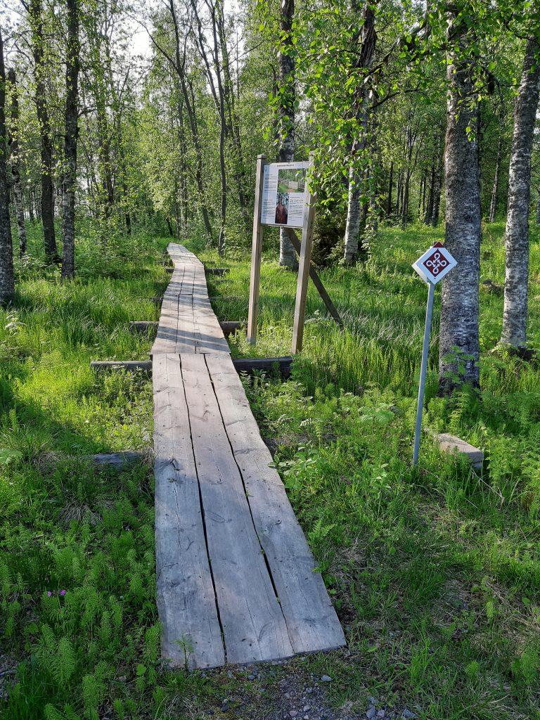 Kirkkotieltä lähtevät pitkospuut Kokonniemen kalmistoon.